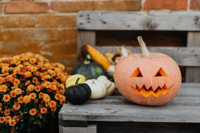 halloween payroll nightmares jack o lantern