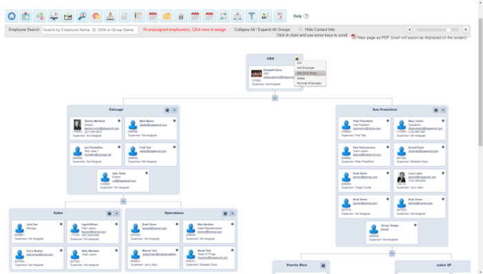 Example of career paths in SDP Connect Organizational Management module
