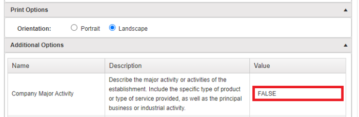 "report configuration screen indicating where to enter your company's major activity in the ""additional options"" dropdown menu"